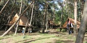 Scoutskamp 2012 'Groeten uit de Rimboe'