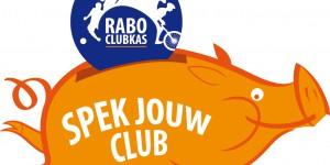 Rabo Clubkas: spek Scouting Rurik!